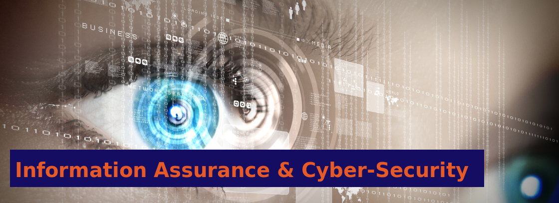 Information Assurance and Cyber Security Banner
